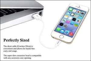 ZiBay iPhone and iPad Lightning Cable