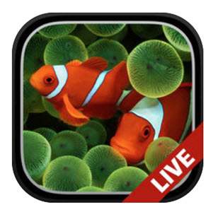 Aquarium Moving Wallpapers aquarium movig live wallpaper