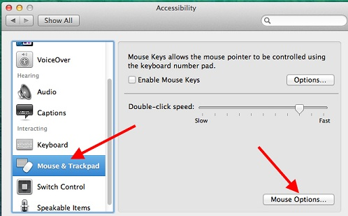 disable-magic-mouse-scrolling-step-2