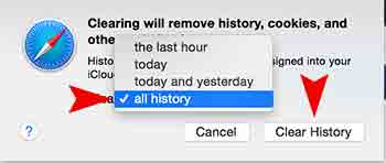 remove safari web history