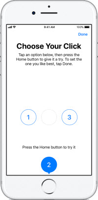 reset home button intensity
