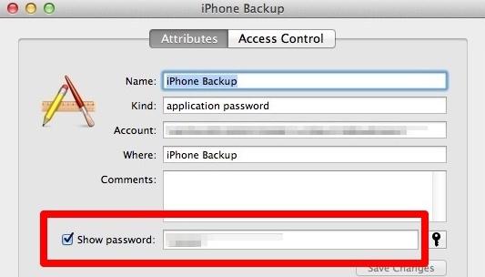 reveal iPhone password