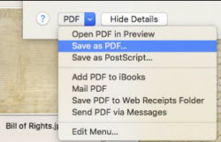 save as PDF file