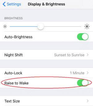 turn off raise to wake